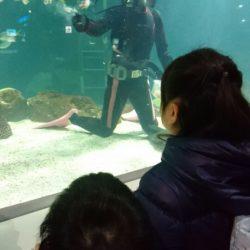 街中の水族館