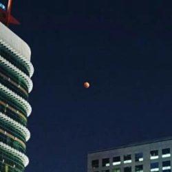 バンコクの月